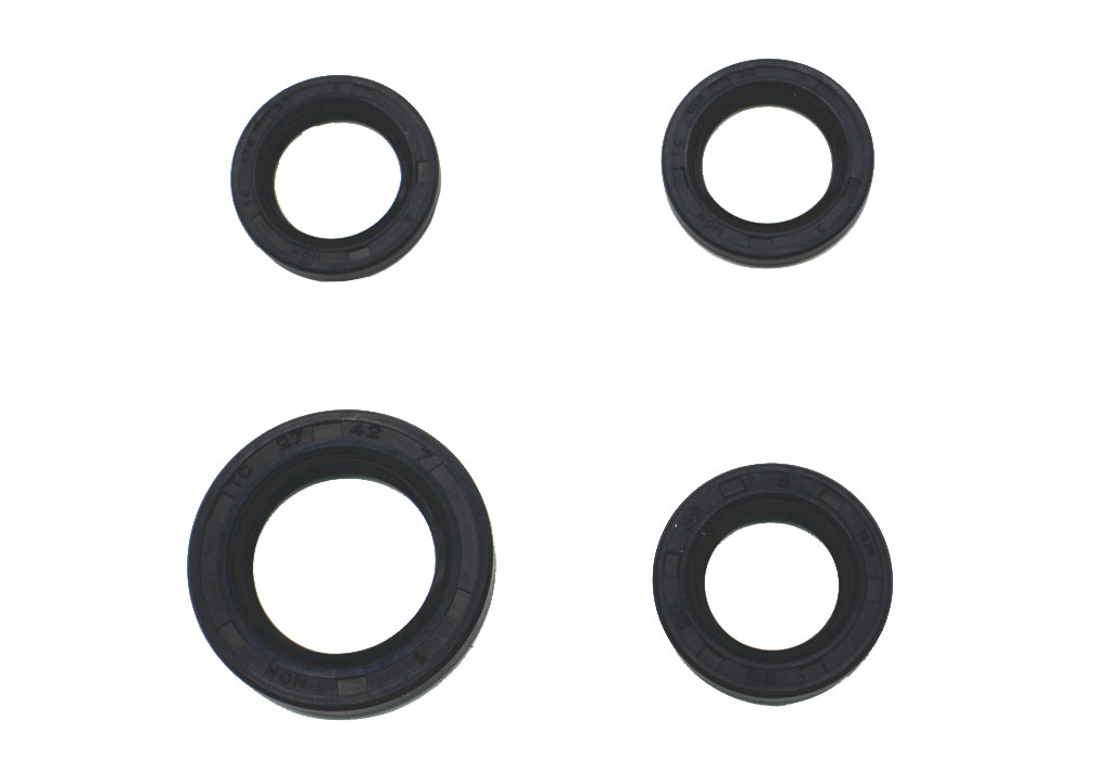 Motorcycle Parts Motorcycle Oil Seal Kit For CS-125