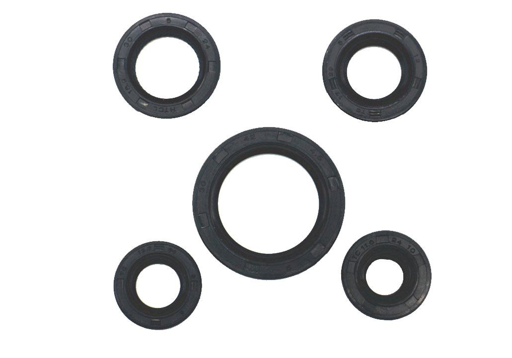 Motorcycle Parts Motorcycle Oil Seal Kit For FT-110